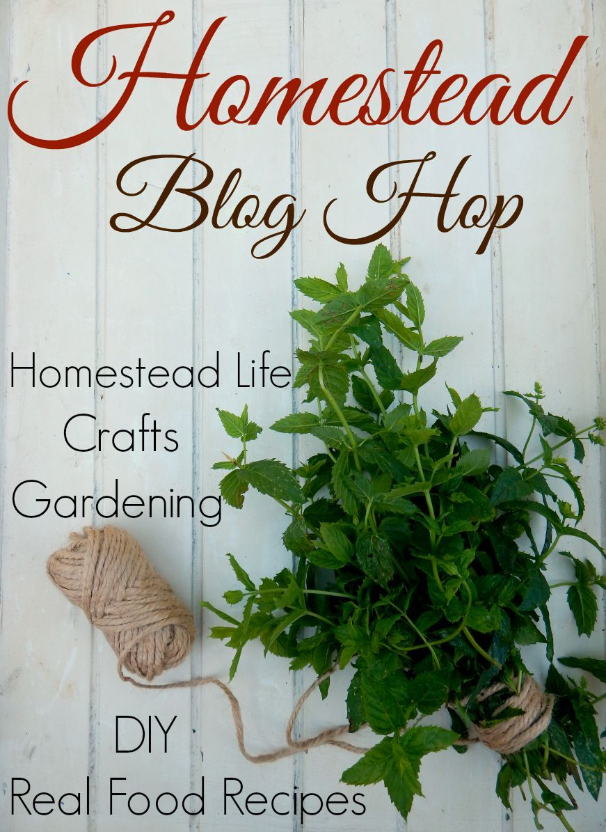 Homestead Blog Hop every Wednesday. Link up your posts on crafts, DIY, natural living, homesteading, farming, natural remedies, real food recipes and more
