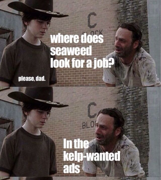 Pin By Karla Anctil On The Walking Dead