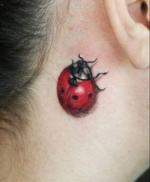Tatouage coccinelle derri re l 39 oreille tatouage animaux pinterest tatouage coccinelle - Tatouage derriere oreille ...