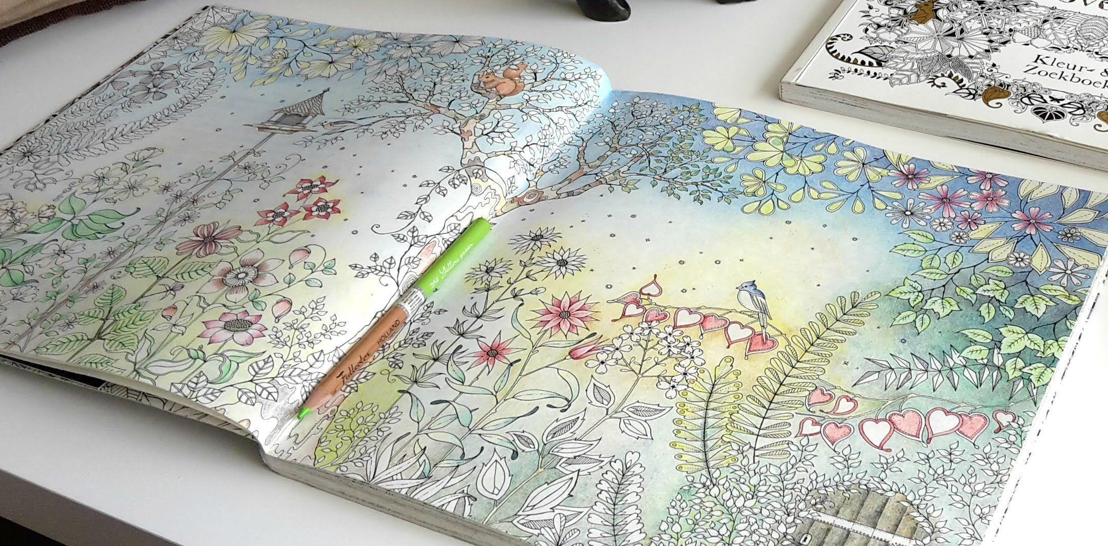 Colouring Secret Garden The Morning Garden Part 5