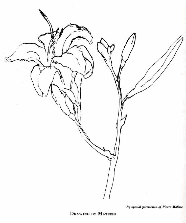 Gesture Matisse Drawing 0