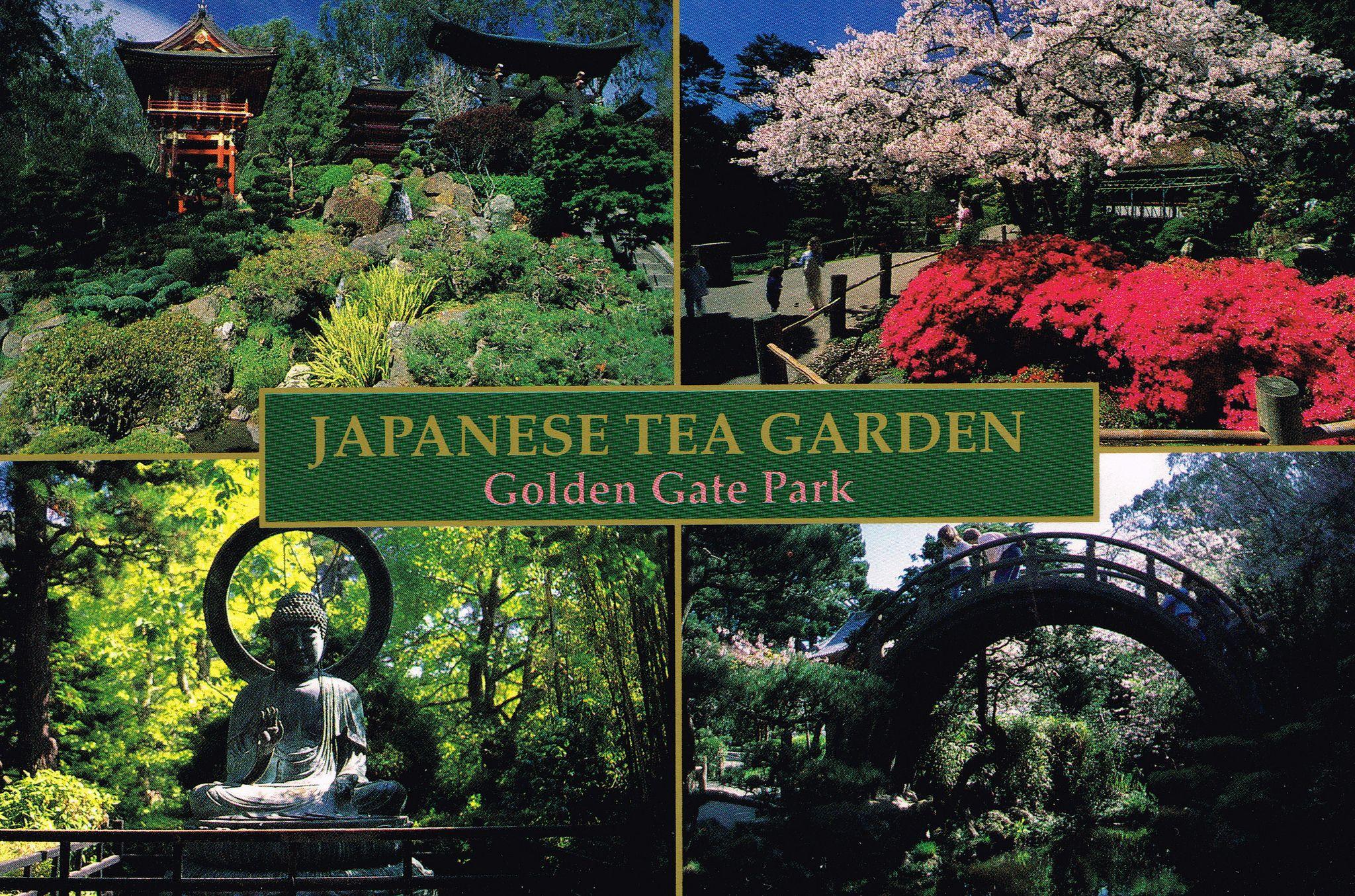 Post Cards Japanese Tea Garden Golden