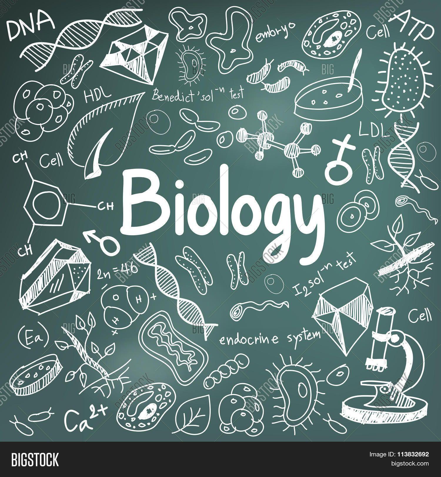 CATATAN BIOLOGI SMA LENGKAP KELAS 10,11,12