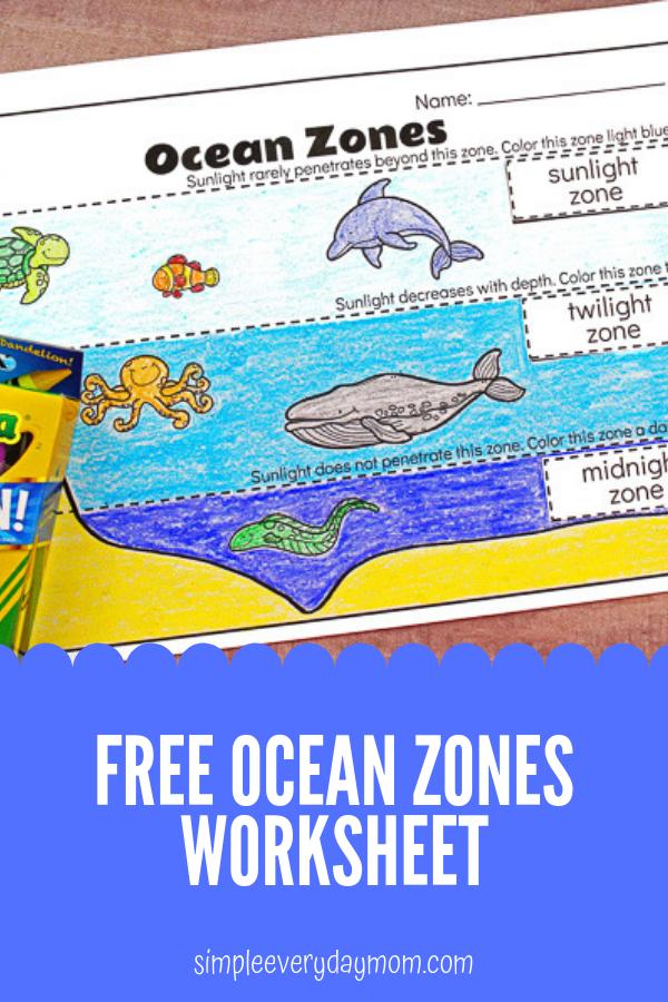 6ff62cbf4f1347fbdec30b082a96570b Ocean Zones Worksheet For Kindergarten on middle school, 2nd grade, black white, animals twilight,