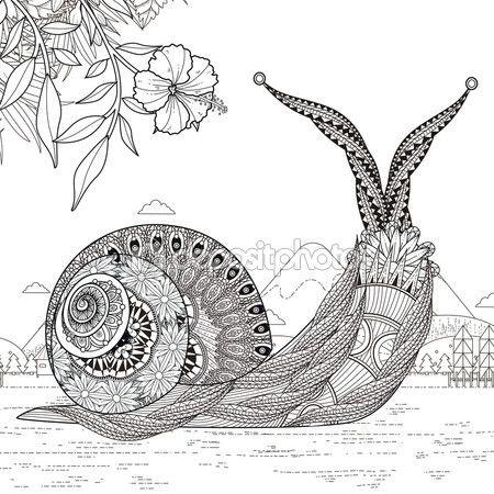 Página para colorear de caracol elegante — Ilustración de stock ...