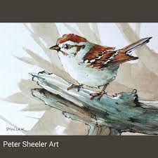 Image result for peter sheeler