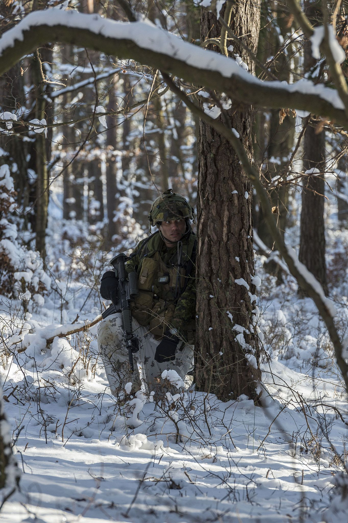 A Canadian soldier takes cover behind a tree while
