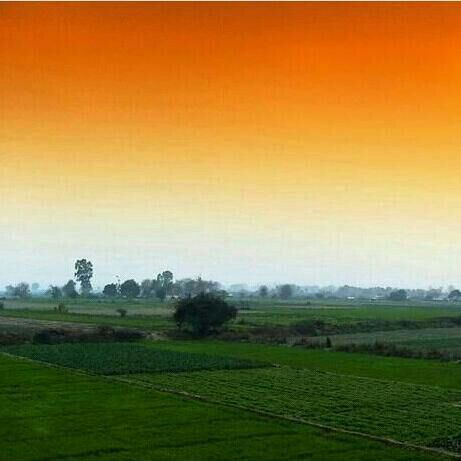Lovely Colours Of Nature Colours Of National Flag India India Flag National Flag India Nature