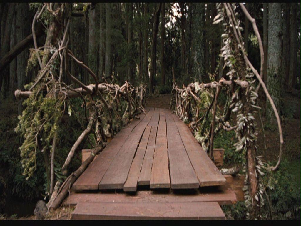 Worksheets Bridge To Terabithia Worksheets 11 best bridge to terabithia images on pinterest from the movie terabithia