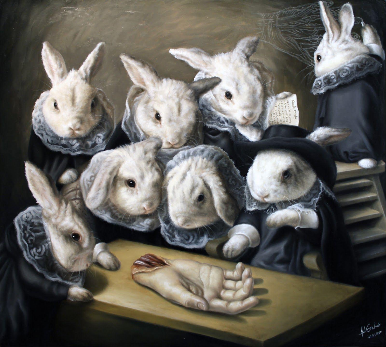 Jose Luis Lopez Galvan Art | Rabbit, Anatomy and Illustrations