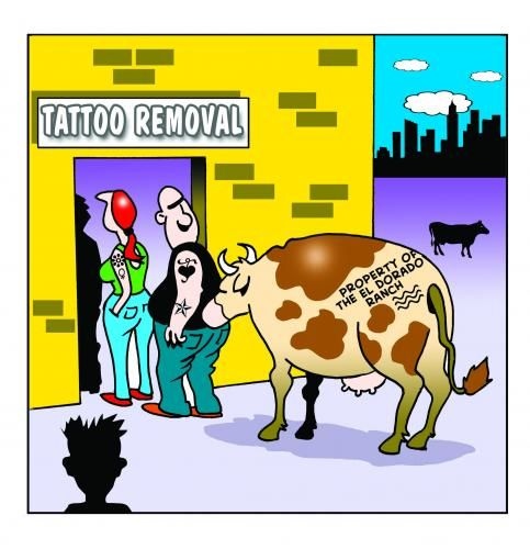 Tattoo Quotes Funny: Tattoo Jokes, Quotes & Sayings