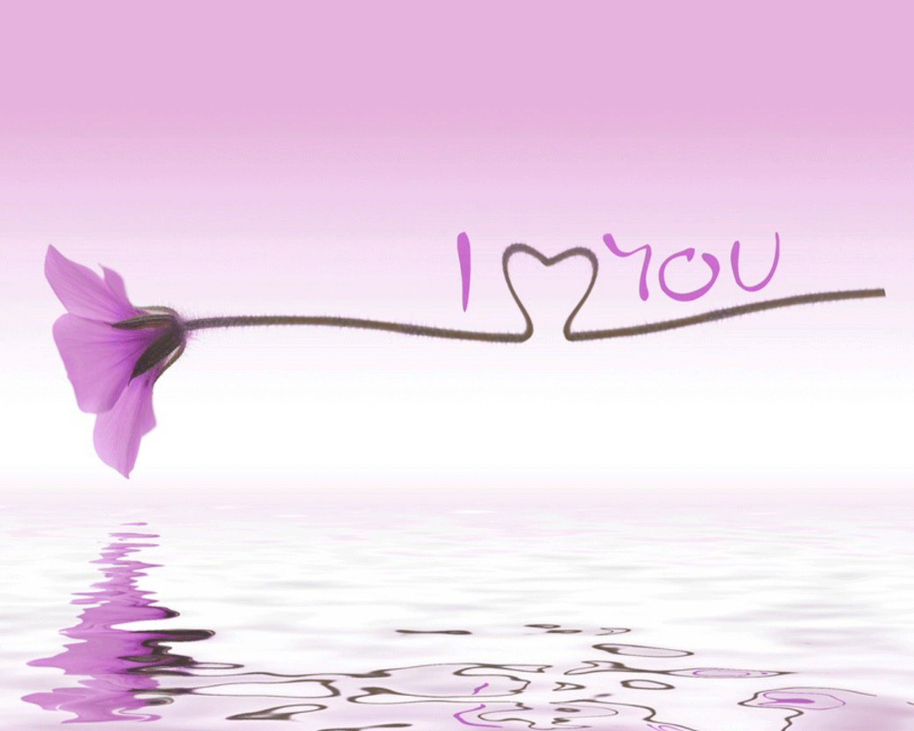 Beautiful Flower And I Love You Quote Wallpaper For Android Wallpaper