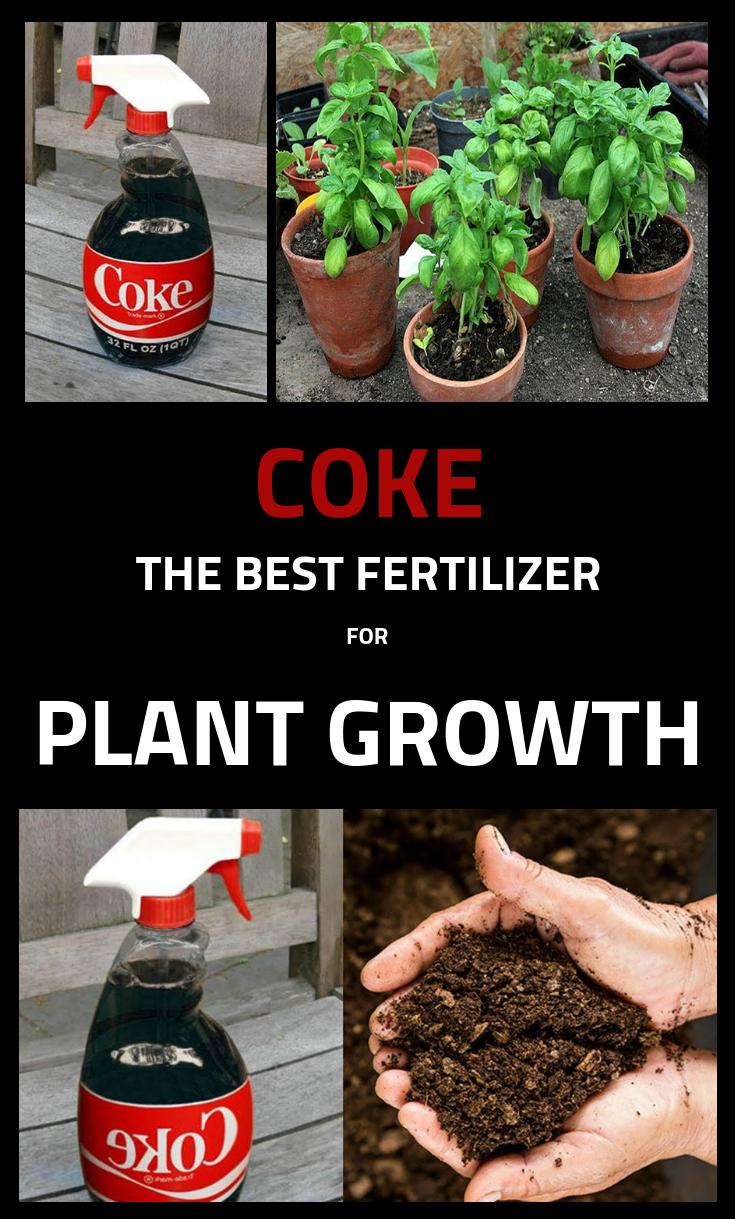 Coke The Best Fertilizer For Plant Growth Gardentipz Com Coke Fertilizer Gardentipzco In 2020 Natural Plant Fertilizer Fertilizer For Plants Plant Fertilizer Diy