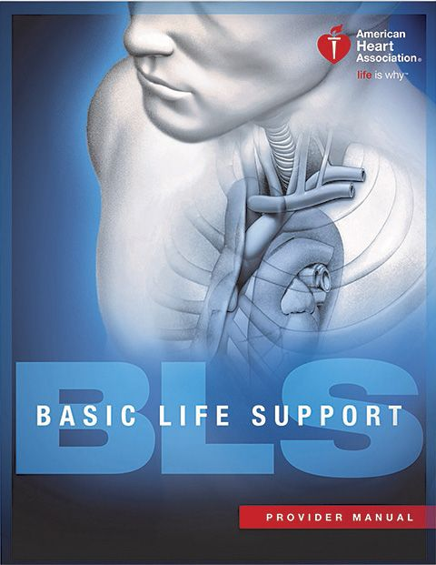 bls heart cpr support courses provider healthcare association edcor springs colorado basic training dive