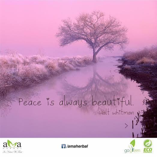 Quoteoftheday Peace Is Always Beautiful Walt Whitman Agree With The Quote Stay With Us And Protect Environment Nature Nature Quotes Beautiful