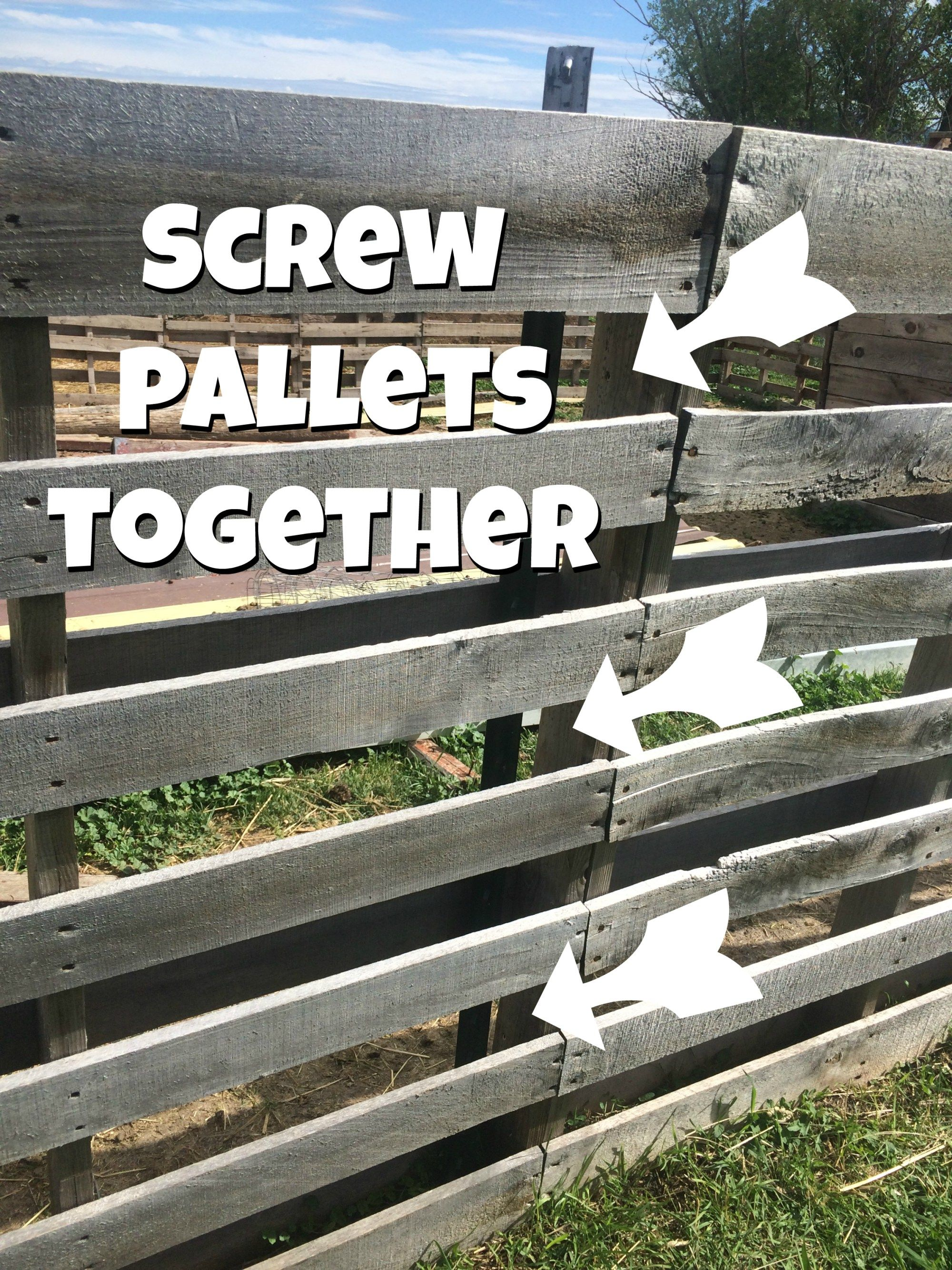 6 Reasons That I Think A Pallet Fence Makes The Best For Small Livestock Pictures And Instructions Included On How Was Built