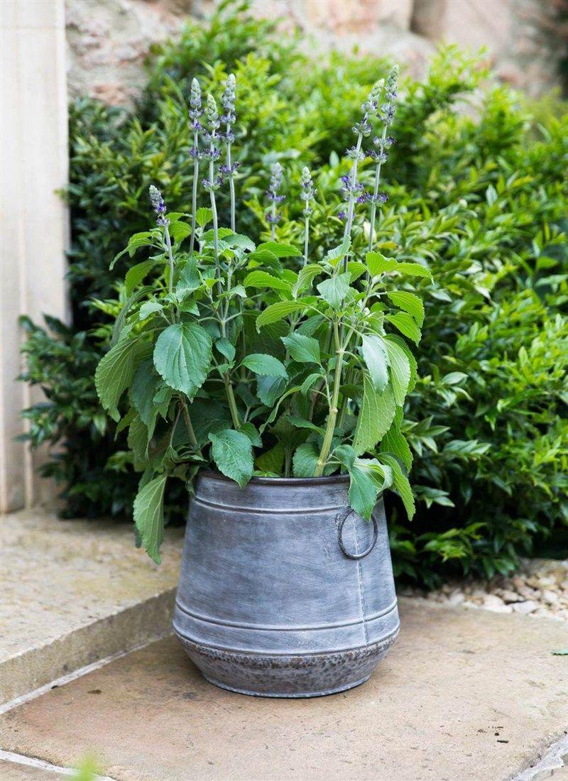 Medium Chadlington Planter by Garden Trading