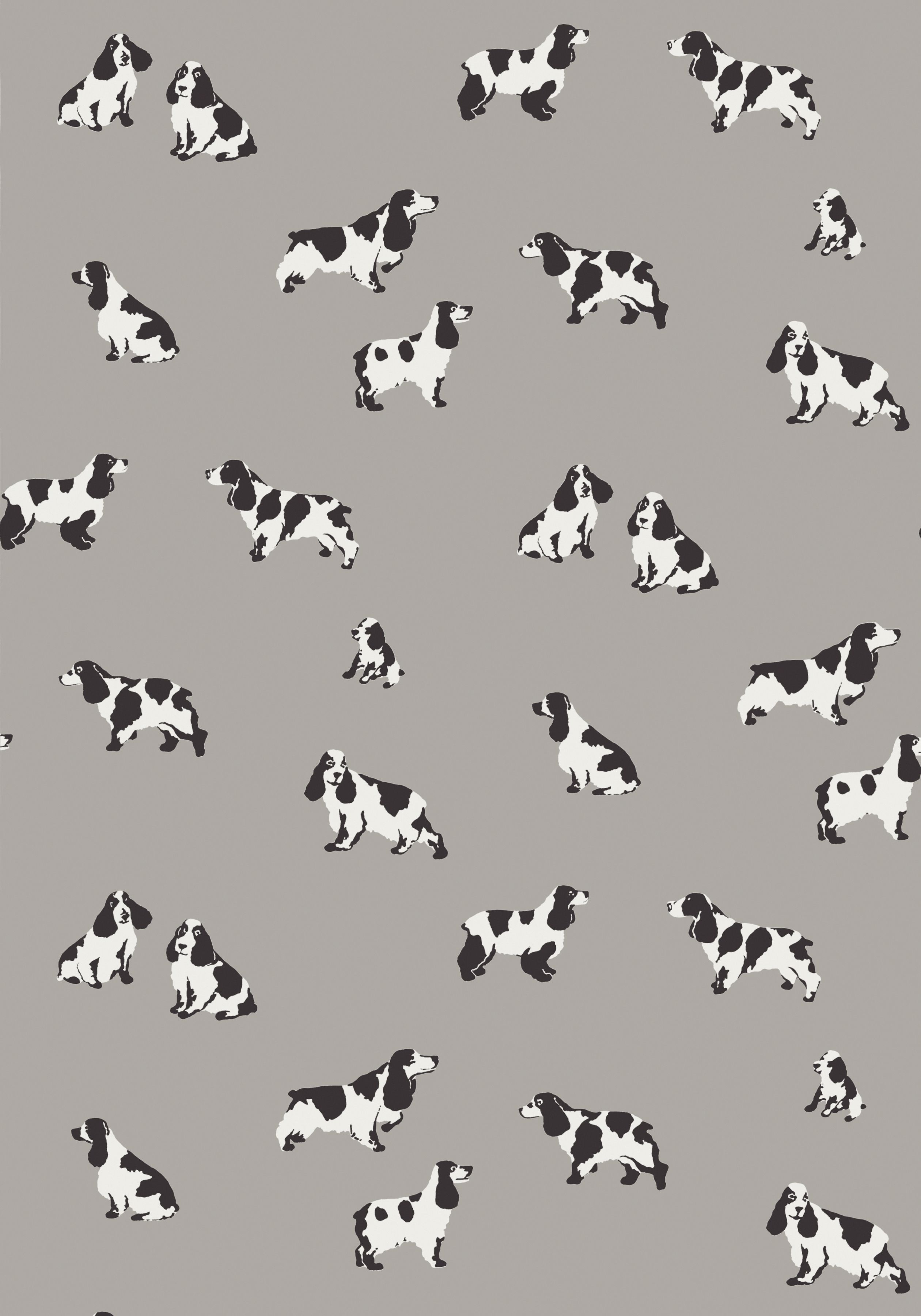 Purebred Grey T36183 Collection Enchantment From Thibaut Thibaut Wallpaper Grey Wallpaper Wallpaper
