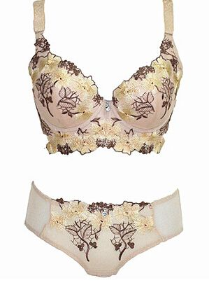 51c1226348 Sexy Plus Size Lingerie embroidery four-breasted side closed gather thin  cup bra sets bra for women design best selling