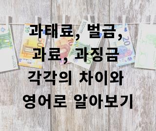 잡학잡식 상식 과태료 과징금 벌금 과료의 차이와 영어로 알아보자 단순한 외국어
