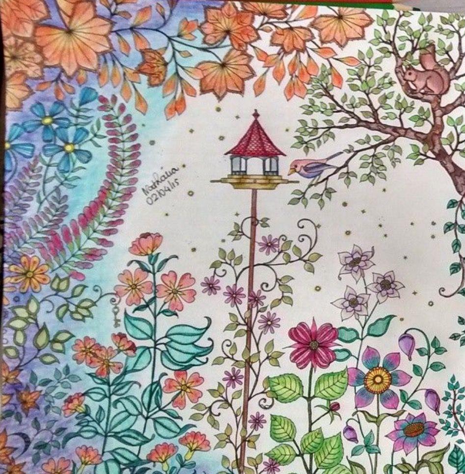 Secret Garden Book Coloring Pen Art Therapy Books Adult Johanna Basford Joanna