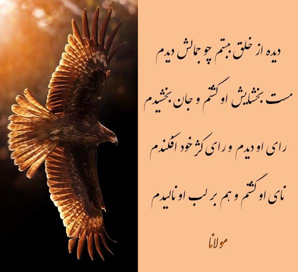 Rumi Divan E Shams اشعار عرفانی غزلیات دیوان شمس اشعار مولانا Chest Tattoo Men Persian Poetry Simple Wallpapers