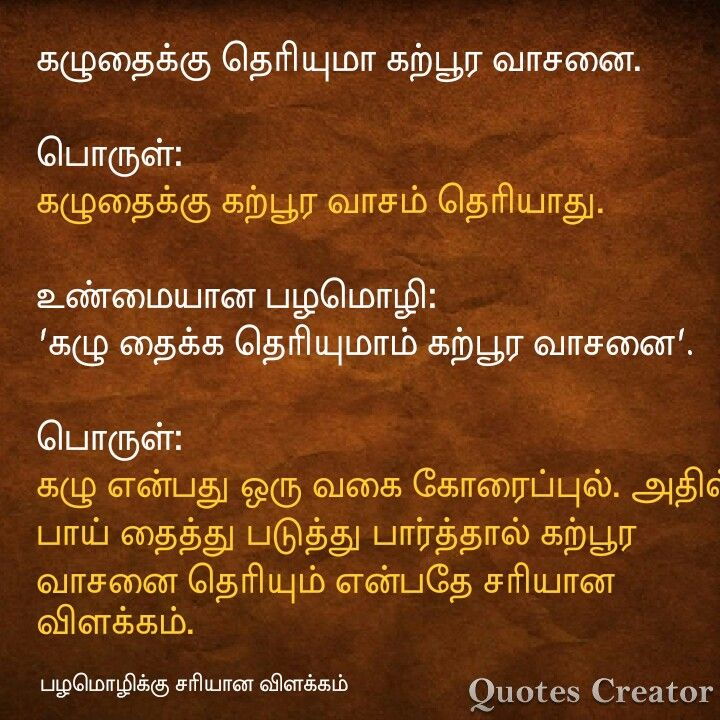 Pin By K Nagarajan On Gk Best Quotes Proverb With Meaning Good Afternoon Quotes