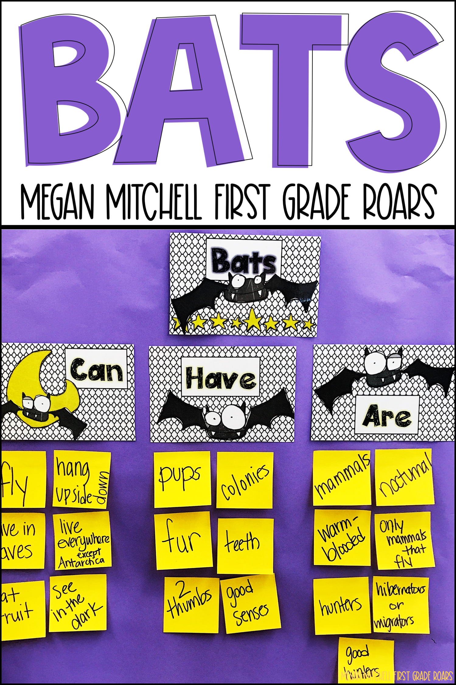 Pin By First Grade Roars On Bats Guided Reading Shared Reading Activities Reading Comprehension Strategies [ 2249 x 1499 Pixel ]