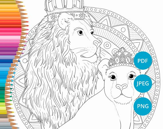 Lion coloring pages, Lioness adult coloring book printable, Safari ...