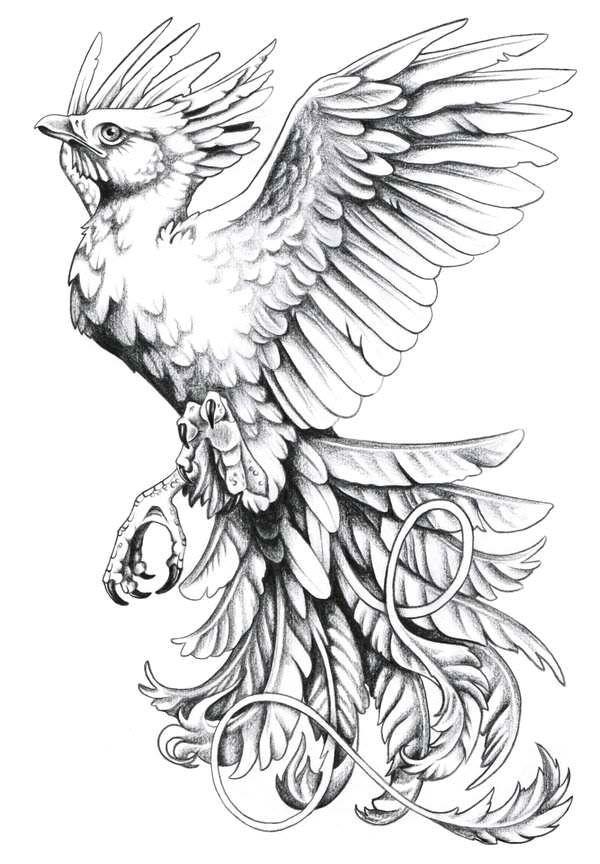 Tattoo artist harpyja for Tattoo artist job description