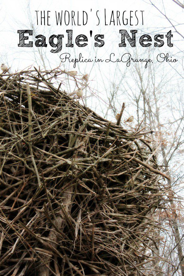 Roadside Attraction: The World's Largest Eagle's Nest Replica in