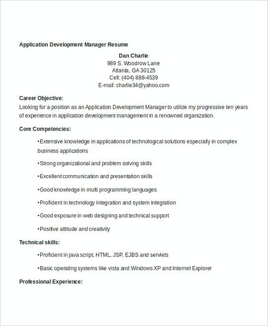 Application Development Manager Resume Template  Professional