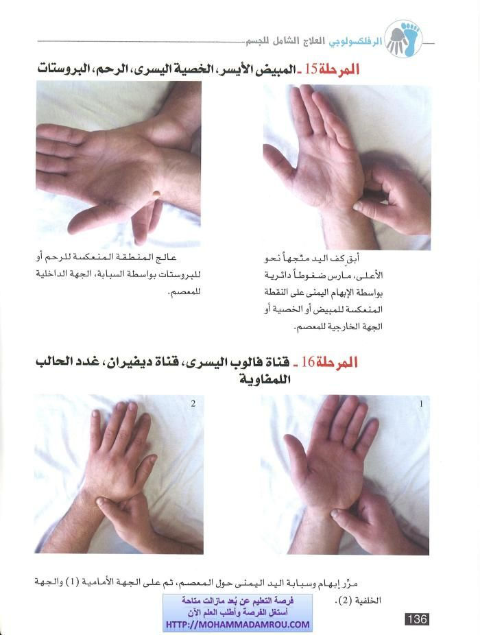 كتاب العلاج الشامل للجسم عبر تدليك اليدين والقدمين رفلكسولوجي Reflexology Massage Reflexology Natural Medicine