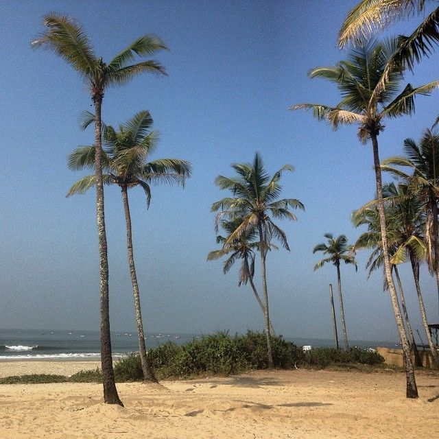 Пальмы #море #аравийскоеморе #гоа #колва #colva #colvabeach #beach #india #пальма - nikolaiivanov @ Instagram Web Interface - 5th village