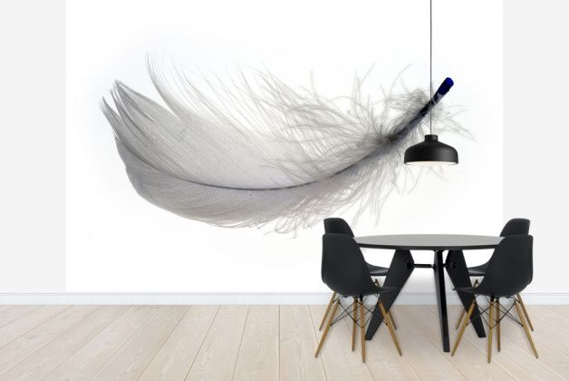 Feather, Photowall #wallpaper