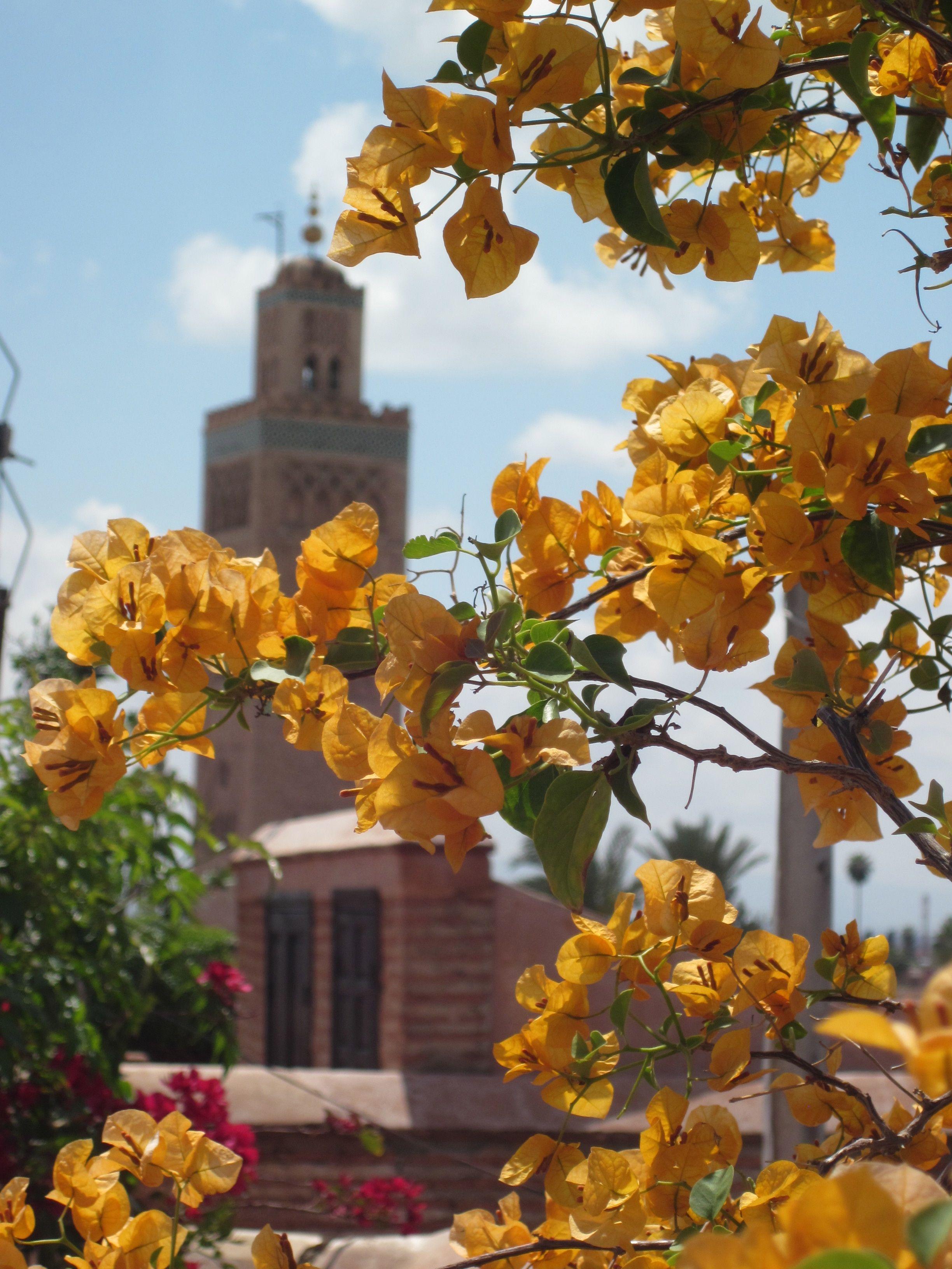 view from Riad el Fenn roof terrace - Marrakech, Morocco