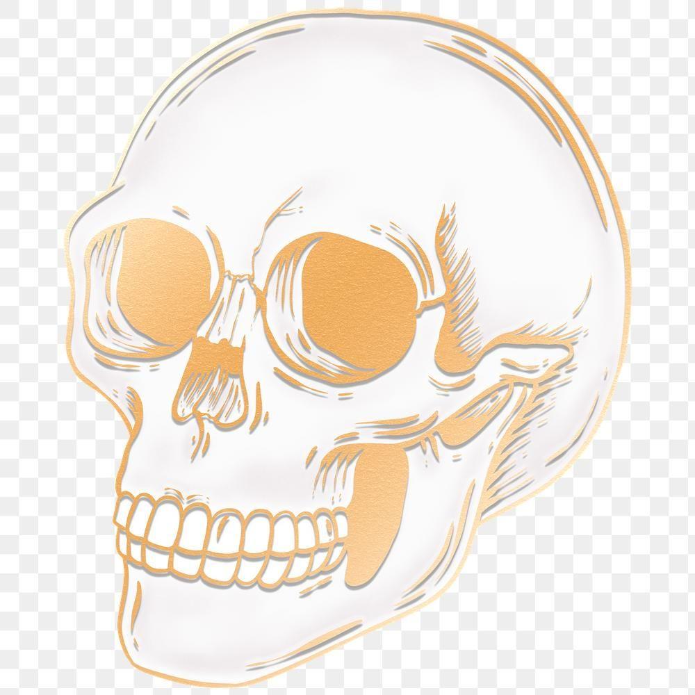 Drawing Gold Skull Design Element Free Image By Rawpixel Com Manotang Skull Design Design Element Gold Skull