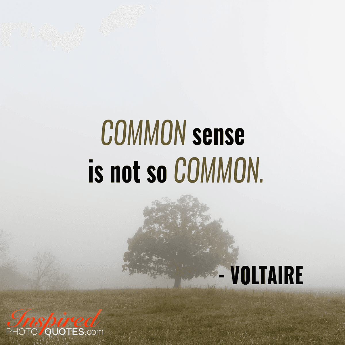 "Quotes Voltaire Common Sense Is Not So Common.""  Voltaire  Inspiring Photo"
