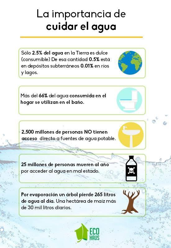 Conoce La Importancia De Cuidar El Agua Un Recurso Invaluable
