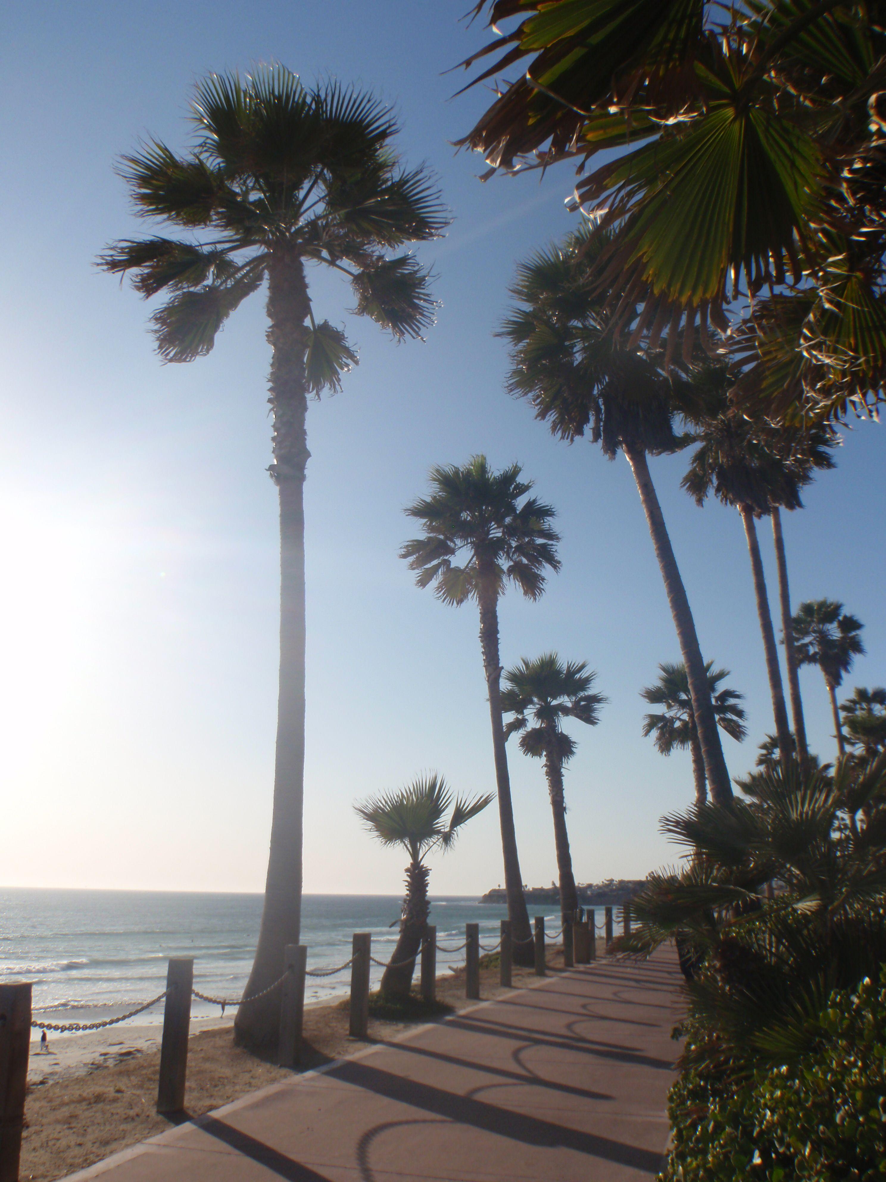 Pacific Beach, San Diego, CA | Travel.. Pacific Beach, CA ...