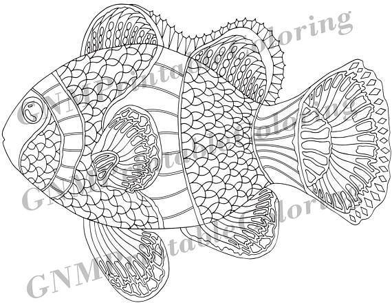 Pin On Fish Colouring Pages