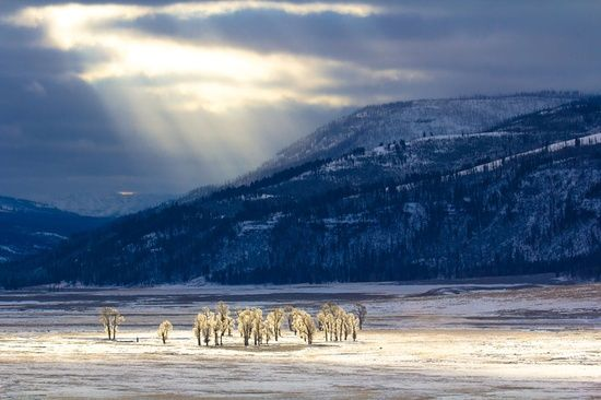 Sunlight on Lamar Valley by Brad Orsted