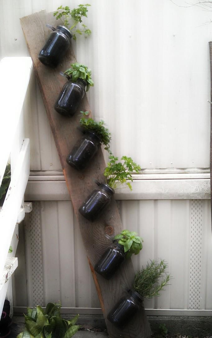 Indoor/outdoor Hanging Herb Garden Made From Antique Mason Jars By Classy  Garbage
