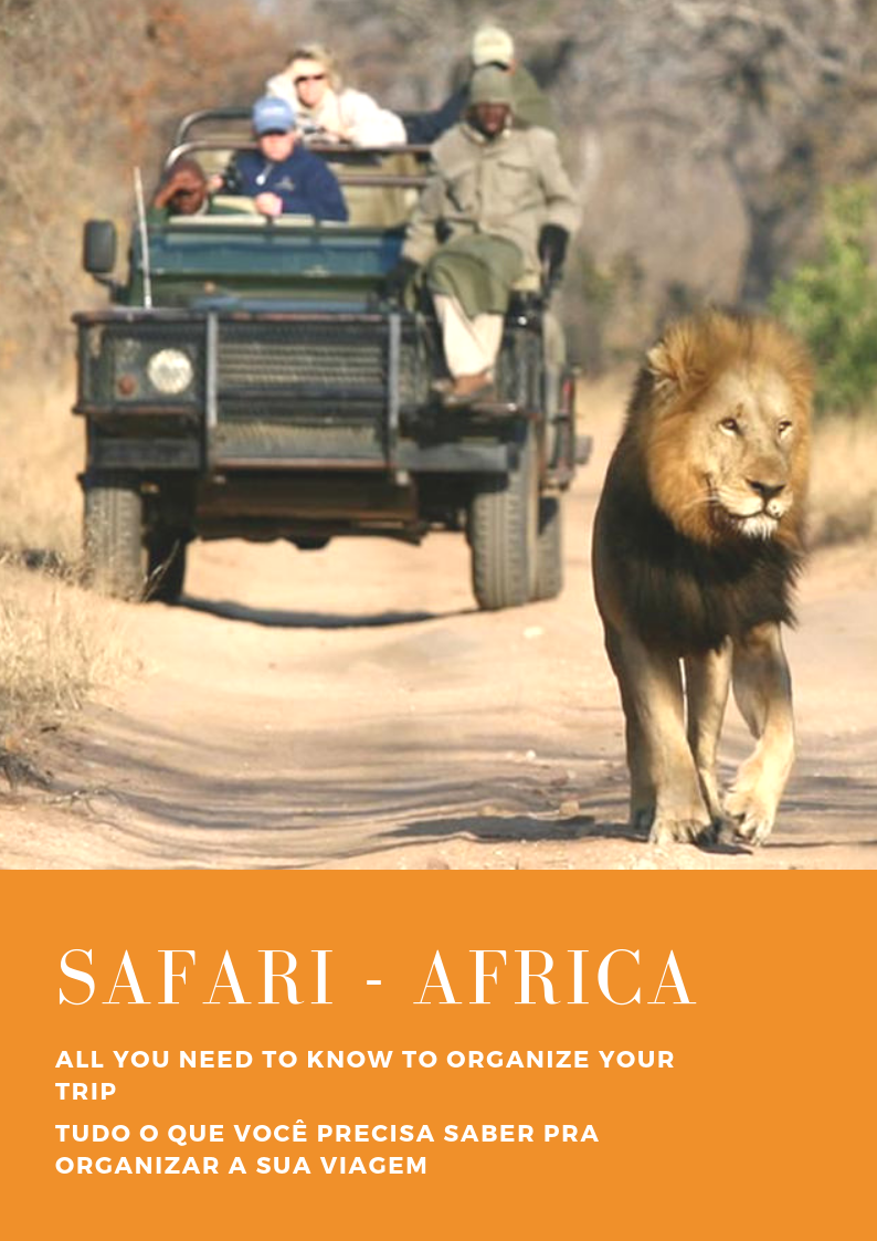 Everything you need to know to organize your safari trip to South