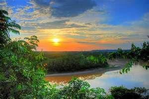 Amazon Rain Forest!