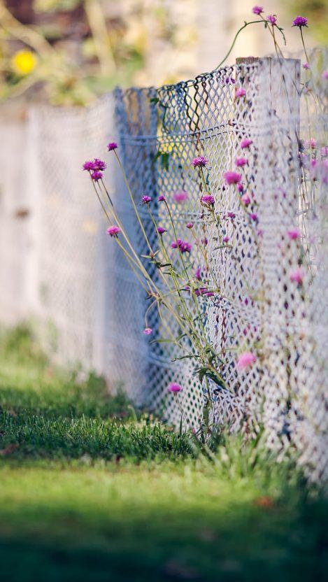 FlowersGrassiPhoneWallpaper  iPhone Wallpapers is part of Picsart background -
