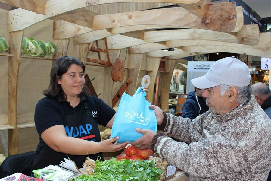 Agricultores de Indap podrán comercializar sus productos en el Mall de Chillán