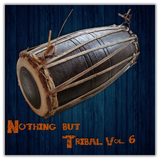 Nothing But Tribal, Vol. 6 (2016)