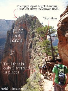 Angels Landing, Zion National Park, Utah! Bosco and I made it this far and than I chickened out. I have to go back and complete this hike someday. So beautiful.