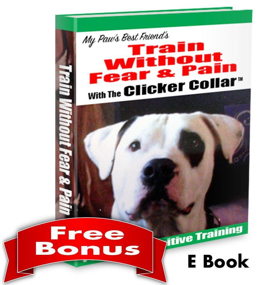 Dog Training Collar With Remote Shock Collar Clicker Training